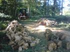 Firewood in the making.